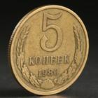 "Монета ""5 копеек 1980 года"""