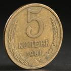 "Монета ""5 копеек 1981 года"""