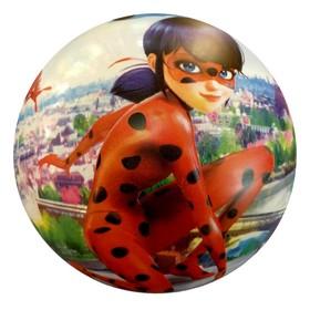 Мяч «Леди Баг» полноцвет, 23 см, в сетке