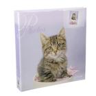 Фотоальбом на 500 фото 10х15 см Big Dog r/h:lovely kittens 1