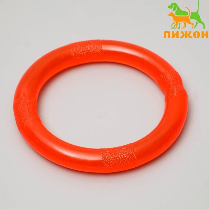 """Игрушка """"Кольцо"""" большое, 14 см, каучук - фото 797984437"""
