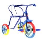 """Велосипед трехколесный """"Тип-Топ 313"""", колеса 10"""" и 8"""", цвет синий"""