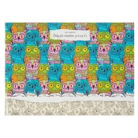 Скетчбук А5, 40 листов на скрепке «Цветные совы», обложка мелованный картон, глянцевая ламинация
