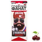 "Ароматизатор в авто ""Главный фанат"", вишня"