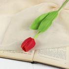 """Цветок искусственный """"Солнечный тюльпан"""" микс"""
