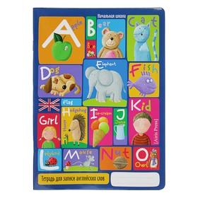 Тетрадь для записи английский слов, 24 листа «Весёлый алфавит», обложка мелованный картон, глянцевая ламинация