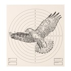 "The target ""eagle"" for shooting from the pneumatic weapon, 14 x14 cm, distance of 10 meters"