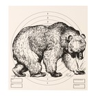 "Target ""Bear"" for shooting from the pneumatic weapon,14 x14 cm,distance of 10 meters"