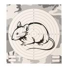 """Мишень """"Крыса"""" для стрельбы из пневматического  оружия,14 х14 см, дистанция 10 метров"""