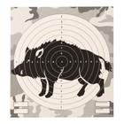 """Мишень """"Кабан"""" для стрельбы из пневматического  оружия,14 х14 см,дистанция 10 метров"""