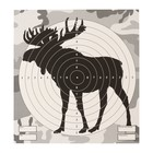 "Target ""Moose"" for shooting from the pneumatic weapon, 14 x14 cm, distance of 10 meters"