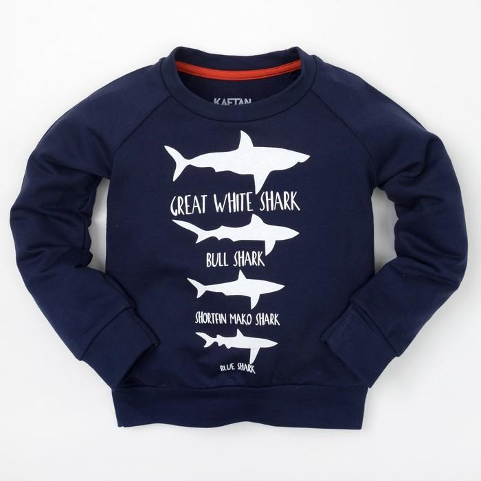 """Толстовка для мальчика """"Морская"""", синяя, р-р 32 (110-116 см) 5-6 л 100 % хл"""