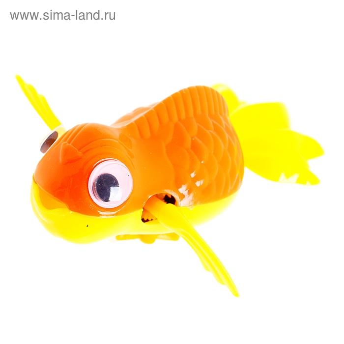 """Игрушка заводная водоплавающая """"Рыбка"""", цвета МИКС"""