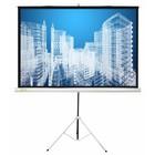 Экран Cactus 104.4x186 Triscreen CS-PST-104x186 16:9, напольный, рулонный