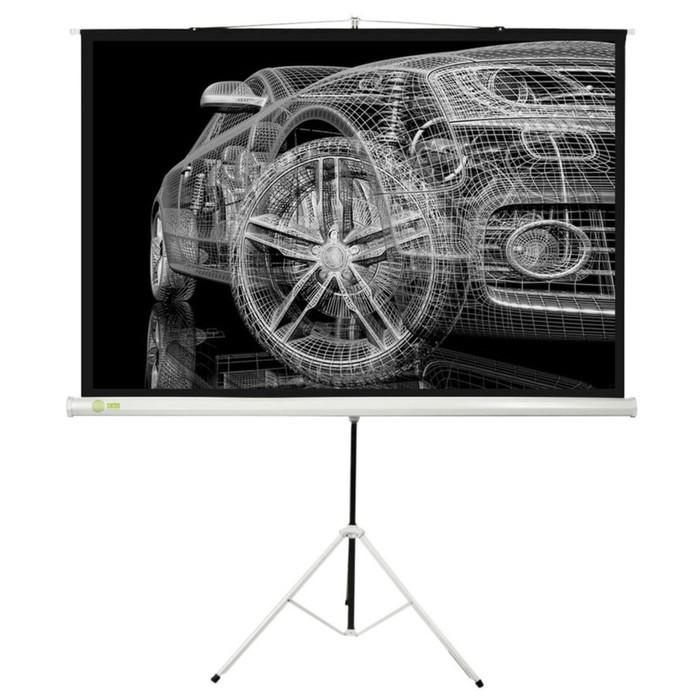Экран Cactus 124.5x221 Triscreen CS-PST-124x221 16:9, напольный, рулонный