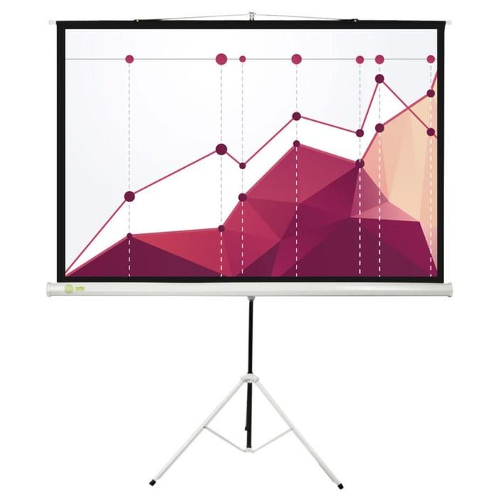 Экран Cactus 180x180 Triscreen CS-PST-180x180 1:1, напольный, рулонный