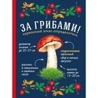 За грибами. Карманный атлас-определитель. Ильина Т.А.