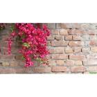 Фотосетка, 300 × 158 см, с фотопечатью, «Красные цветы»