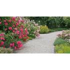 Фотосетка, 300 × 158 см, с фотопечатью, «Сад»