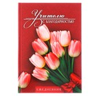 """Ежедневник """"Учителю с благодарностью"""", твёрдая обложка, А5, 160 листов"""