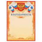 """Благодарность """"Универсальная"""" символика РФ, красная рамка, узоры"""