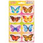 """Наклейки светящиеся """"Радужные бабочки"""" 166х236 мм"""