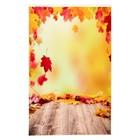 """Фотофон винил """"Осенний листопад"""" стена+пол 80х125 см"""