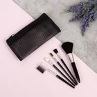 Набор кистей для макияжа, 5 предметов, 13*6,5*1см, цвет чёрный