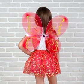 Карнавальный набор «Бабочка», 2 предмета: юбка и крылья, 5-7 лет
