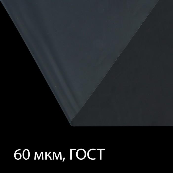 Плёнка полиэтиленовая, толщина 60 мкм, 3 × 10 м, рукав, прозрачная, 1 сорт, ГОСТ 10354-82