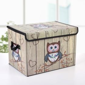 Короб для хранения с крышкой 38х25х25 см 'Совенок' Ош