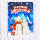 """Магнит """"Мурманск. Медведи"""""""