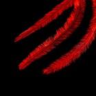 Перья для ногтей, цвет красный