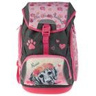 Рюкзак школьный с эргономичной спинкой Belmil 42 х 26 х 19 см, Comfy Rosie, розовый/серый
