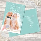 Открытка свадебная «Милые котики», без эффектов, 12х18 см