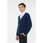 Кардиган для мальчика, рост 134 см, цвет синий 1S5-001-11811