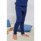 Кальсоны для мальчика, рост 104 см, цвет синий