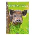 """Календарь перекидной, ригель и пружина """"Символ года - 3"""" 34х49см"""