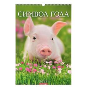 Календарь перекидной, ригель и пружина 'Символ года - 1' 2019 год, 34х49см Ош