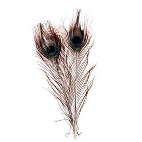 Набор перьев павлина для декора 2 шт.