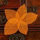 Сухие листья, (набор 5 шт), размер 1 шт 8*5, цвет оранжевый
