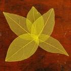 Сухие листья, (набор 5 шт), размер 1 шт 8*5, цвет желтый