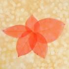 Сухие листья, (набор 5 шт), размер 1 шт 8*5, цвет красный