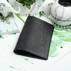Обложка для паспорта, кристалл, цвет чёрный