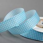 Лента репсовая «Орнамент», 25 мм, 22 ± 1 м, цвет голубой