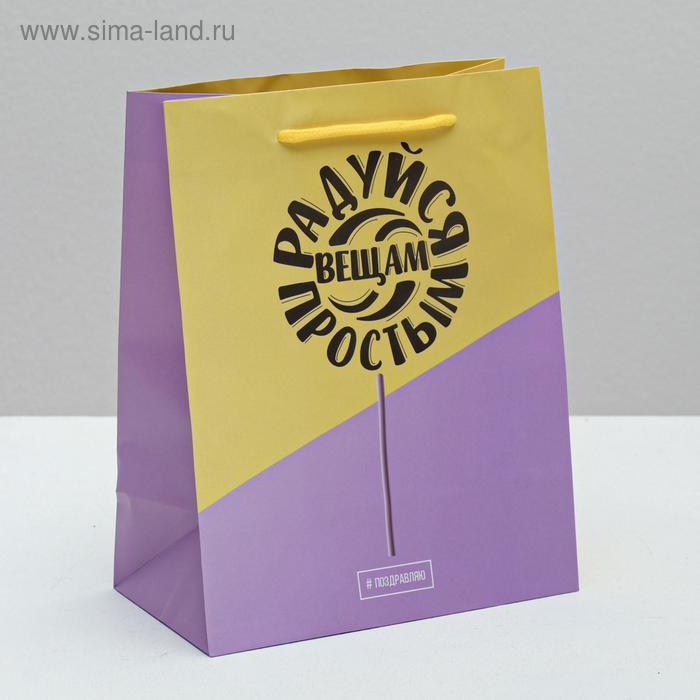 Пакет ламинат вертикальный «Радуйся простым вещам», MS 18 х 23 х 10 см
