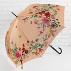 Зонт полуавтоматический «Нежность», 8 спиц, R = 48 см, цвет бежевый