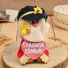 """Amulet brownie """"Kuzya in the cap, from the heart,"""" 30х16х14 cm, mix"""