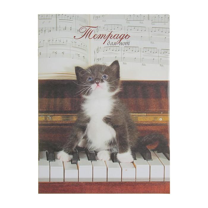 """Тетрадь для нот А4, 8 листов """"Котенок играет гаммы"""""""