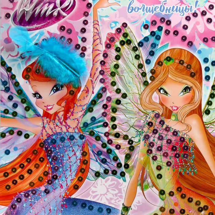 Аппликация пайетками ''Милые волшебницы!'' феи ВИНКС: Блум и Флора + 4 цвета пайеток   2822197